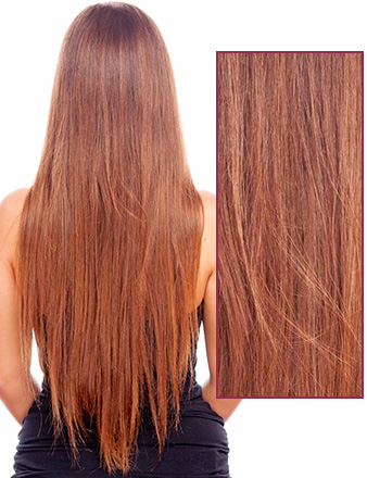 Female long brown hair